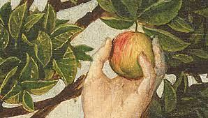 ニュートンの毒林檎
